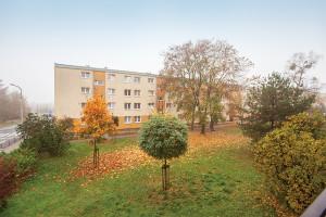 Elekcyjna Widok Z Balkonu IMG 4733 Small